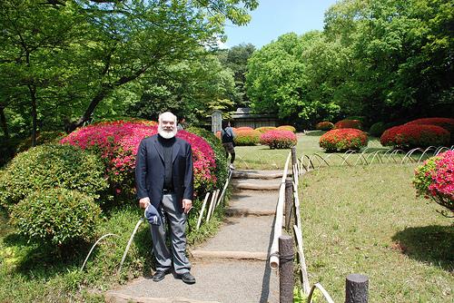 Azaleas In Meiji Shrine