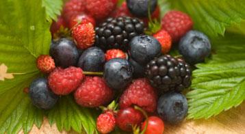 berries mixed