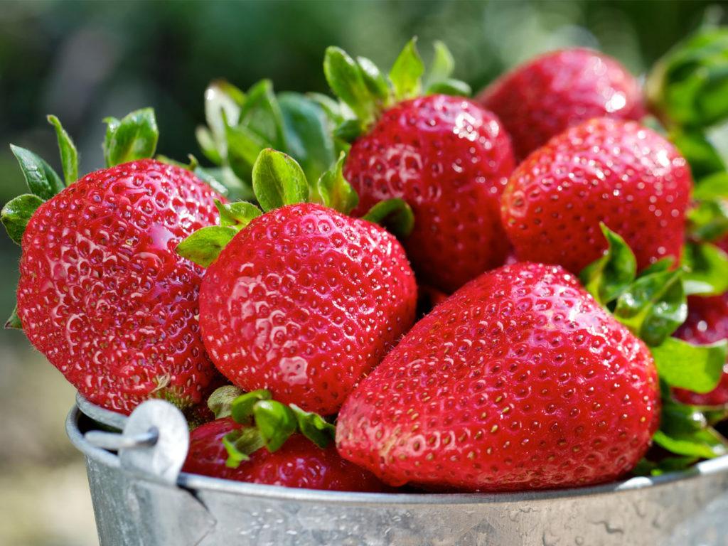 The Dirty Dozen Foods Gallery Foods You Should Always Buy Organic