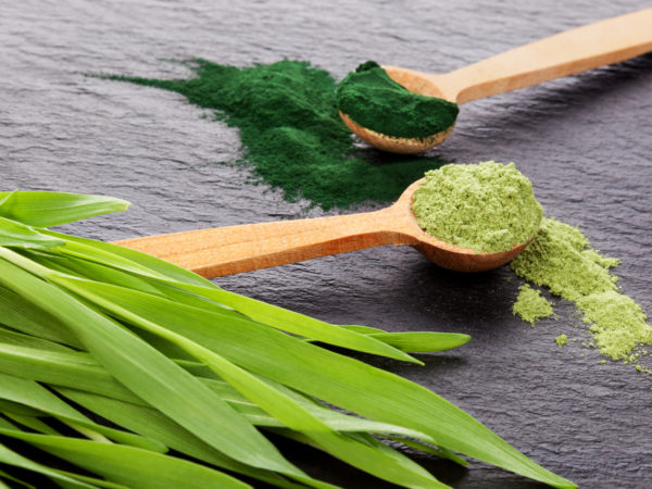 Chlorella for Chronic Fatigue? | Ask Dr. Weil | Andrew Weil, M.D.