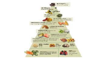 Natural Health Natural Medicine Andrew Weil Pdf