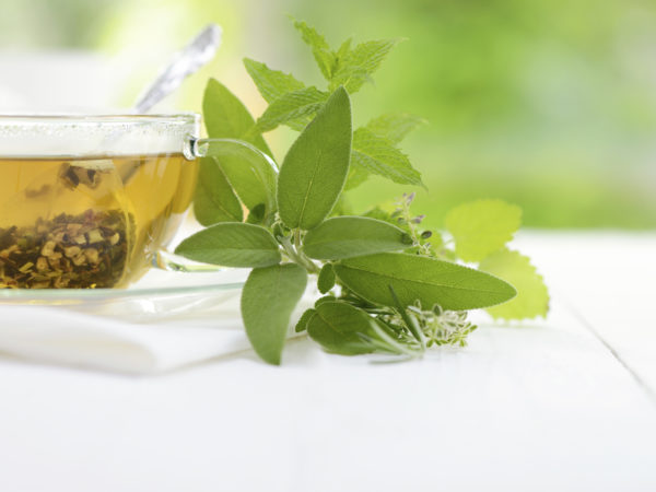 Herbal tea in a teabag with herbal leaves