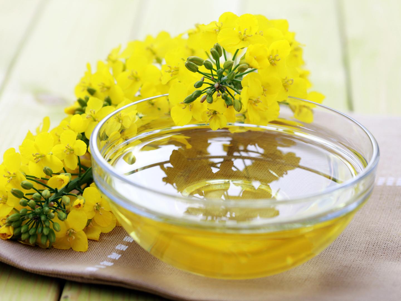 choosing canola oil