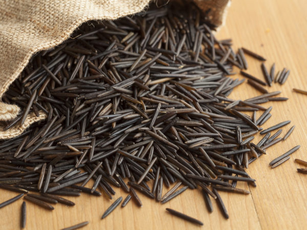 Raw black wild rice from a jute bag
