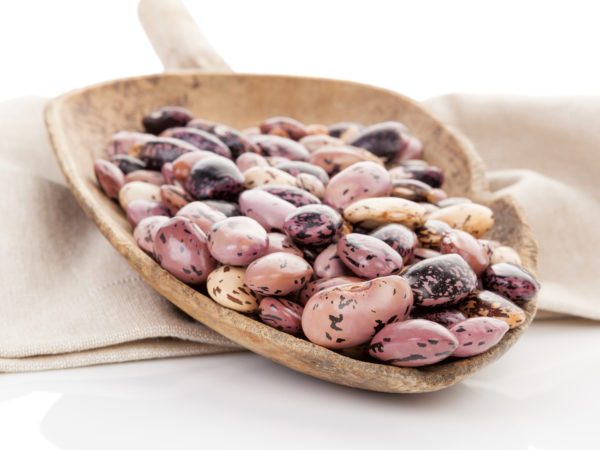 Cooking With Legumes: Pinto Beans - Dr