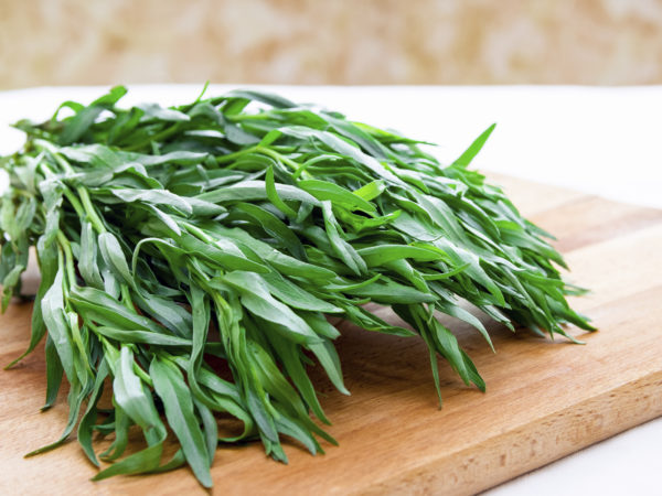 Cooking With Spices: Tarragon   Dr. Weil's Healthy Kitchen