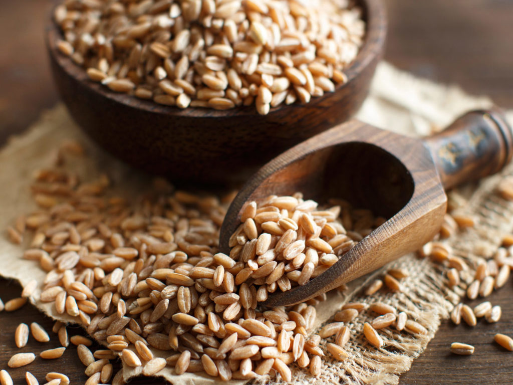 Great Whole Grains to Add to Your Diet