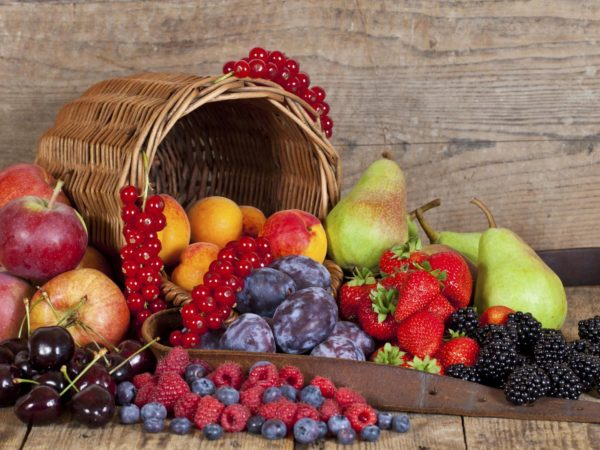 Harvested Summer Fruits and Berries an a wooden Table with its Basket.