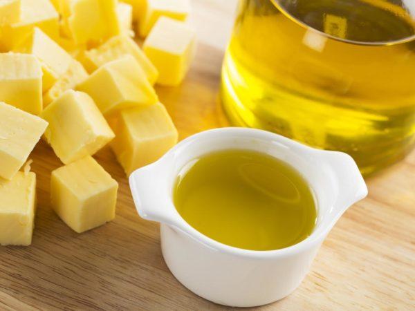 在橄榄油里的橄榄油和橄榄油的小冰箱里