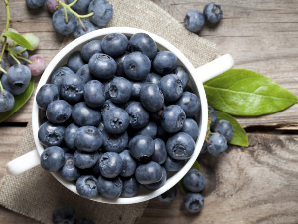 Are Cooked Blueberries Healthy Dr Weil