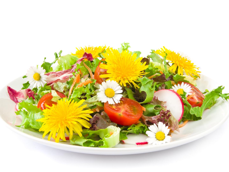 Цветы фото и рецепты блюд