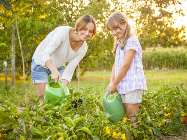 Mother and daughter watering vegetables in their garden. Trees and corn field visible in the background. Sunlit from the back.