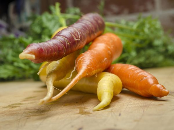 Bunch of multi colored carrots on wood table - Stock Photo