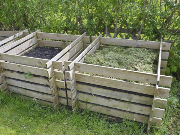 compost in the garden background