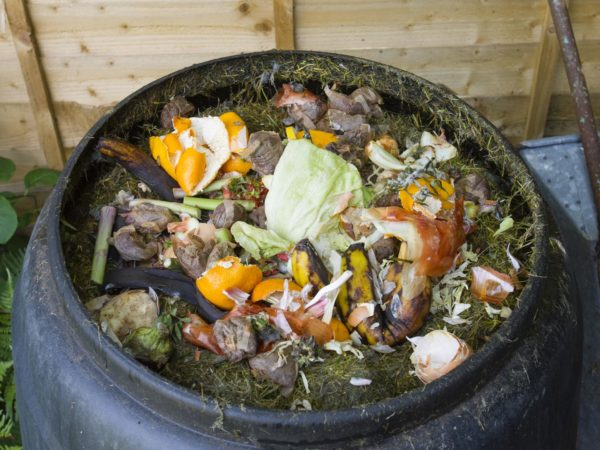 Fruit and vegetable peelings, eggshells, tea bags and grass cuttings can all be recycled for the garden.