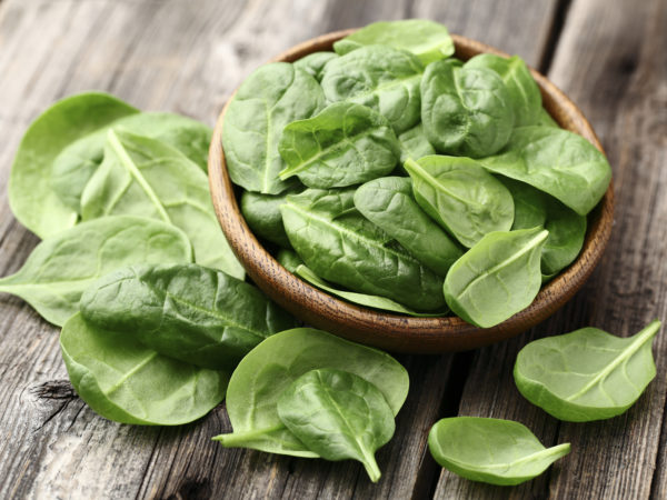 Fresh spinach on a wooden background