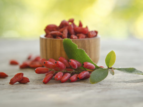 Goji A Miracle Health Drink Dr Weil