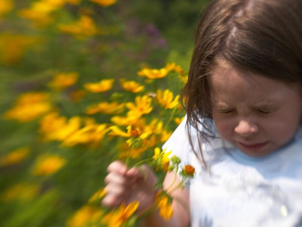 Girl sneezing in field of flowers