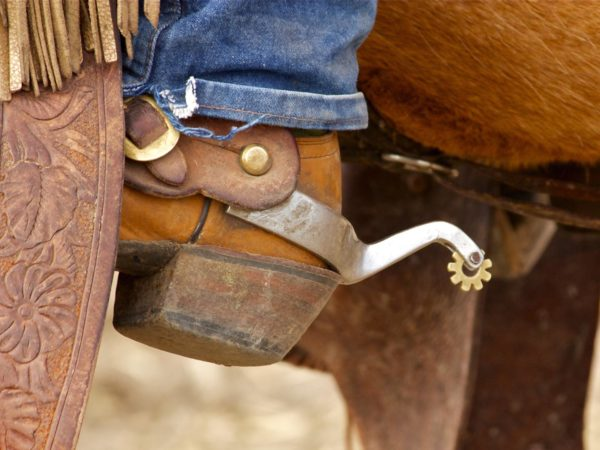 A western spur on a cowboy boot.