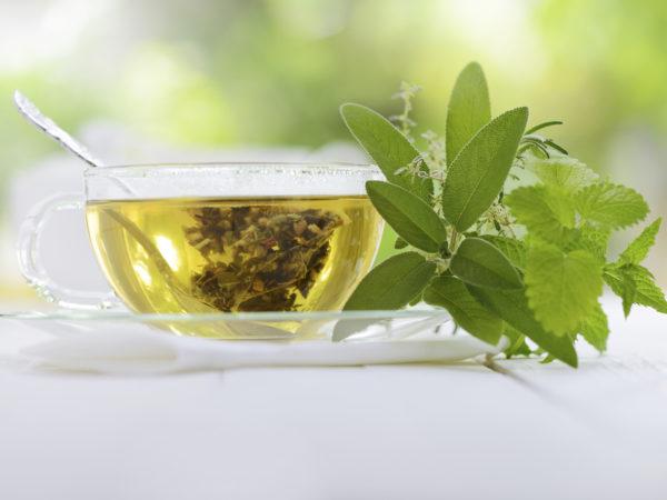 Green Tea for Genital Warts? - DrWeil com