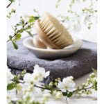 detox still-life - body brush in mineral cup holder over towel and fresh white spring blossom flowers for natural beauty and washing up routine