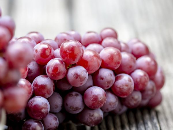 Good Health With Resveratrol | Aging Gracefully | Andrew Weil, M.D.