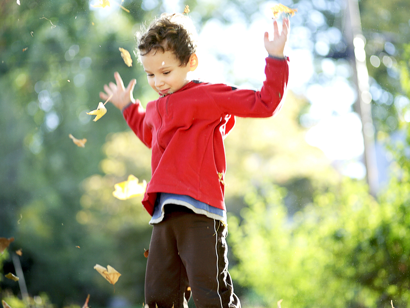 Adhd Without Drugs? Children's Health Articles, Reviews, Insights & Answers  From How To