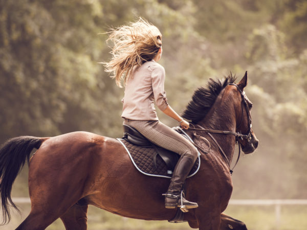 Young woman ridding a stallion in nature.