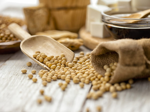 Soy beans on the wooden table
