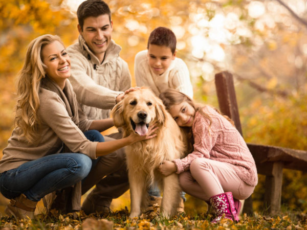 Happy family with two children with their golden retriever dog in a park on a warm autumn day.