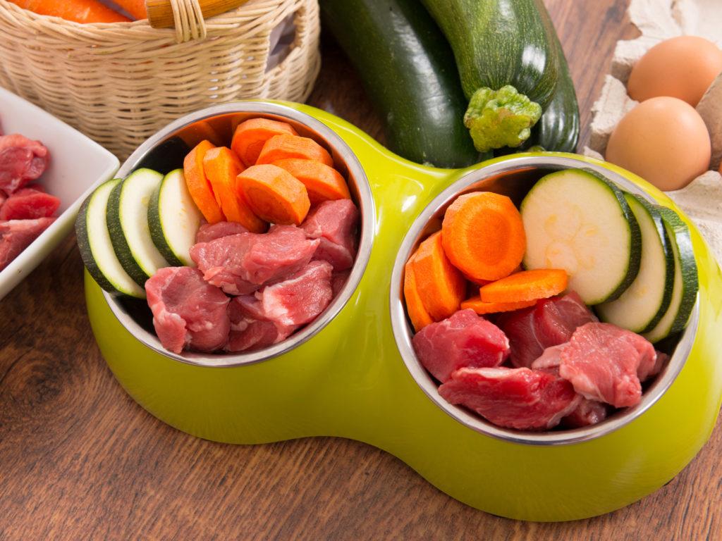 health-wellness_balanced-living_pets-pet-care_raw-food-doggie-diet_1440x1080_519131138-1024x768.jpeg (1024×768)
