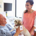 Animal Assisted Therapy | Dr. Weil's Wellness Therapies