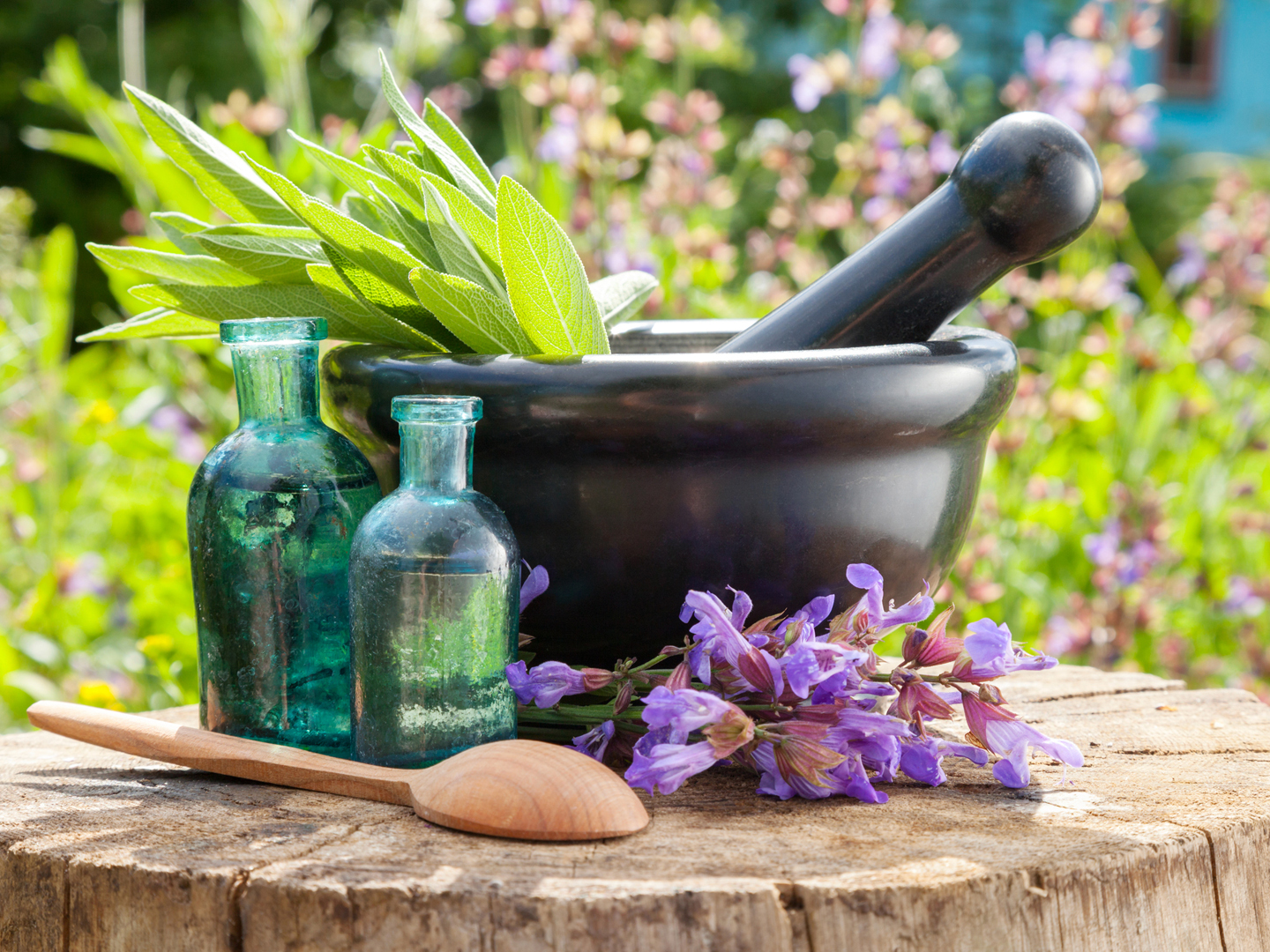 Homeopathic Medicine Homeopathic Doctor Homeopathy