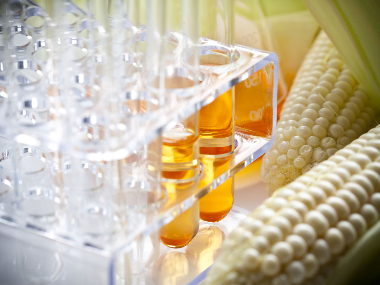 Examples List on Fructose Corn Syrup
