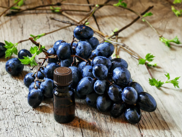 Essential oil of grape, vine, blue grapes, old wooden background, selective focus