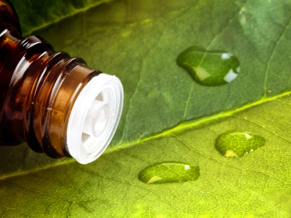 Leaf with water drops on the bottle for alternative medicine