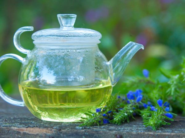Hyssop | Herbs & Remedies | Andrew Weil, M.D.