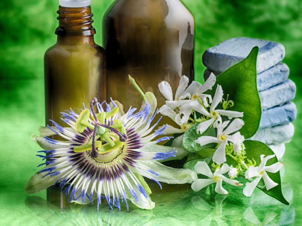 Passionflower | Herbal Remedies | Andrew Weil, M D