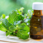Peppermint | Herbal Remedies | Andrew Weil, M.D.