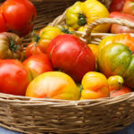 Best Place To Store Tomatoes | Weekly Bulletins | Andrew Weil, M.D.