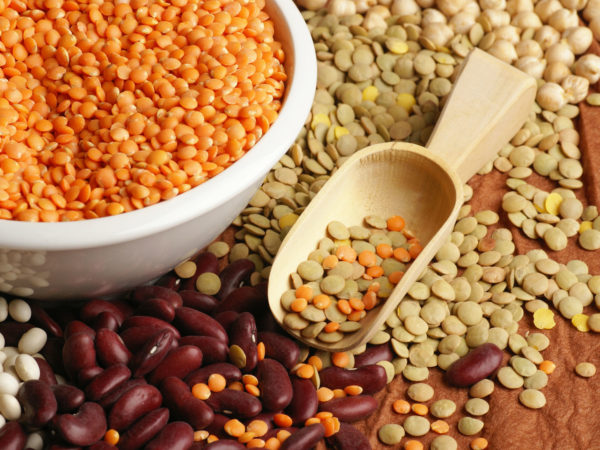 """""""Various pulses - chickpea, lentil and beans"""""""