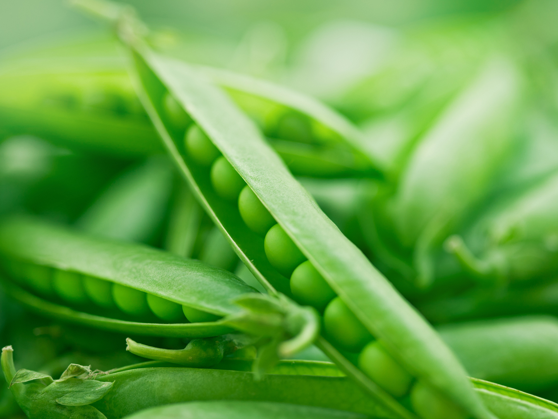 Molybdenum Supplements Amp Remedies Andrew Weil M D