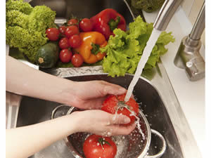 Diets & Nutrition - Food Safety