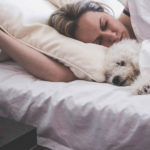 dog help with sleep