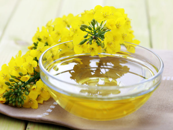 anti-inflammatory oil