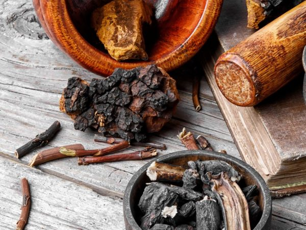 Concerned About Cancer? 6 Asian Mushrooms | Andrew Weil, M.D.