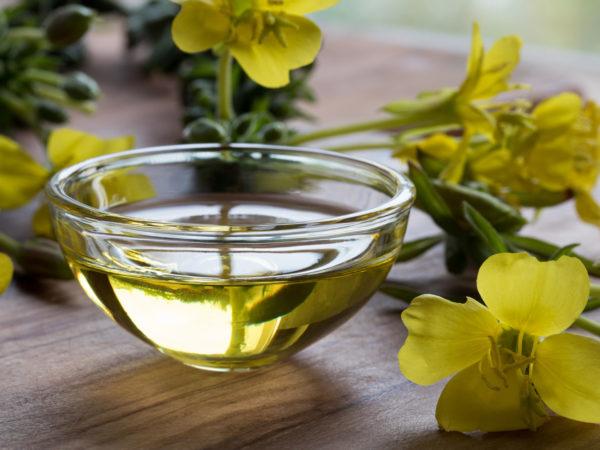Evening Primrose Oil – A Natural Anti-Inflammatory Option