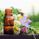 Flower Essences Address To Your Mental Outlook | Andrew Weil, M.D.