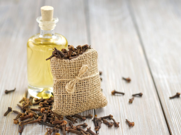 Clove Oil | Guide To Essential Oils | Andrew Weil, M.D.