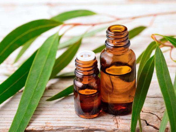 Етеричното масло от евкалипт може да помогне за възстановяване от слънчево изгаряне.